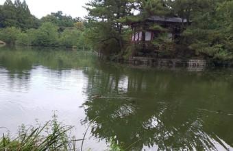 姪っ子甥っ子と石神井公園